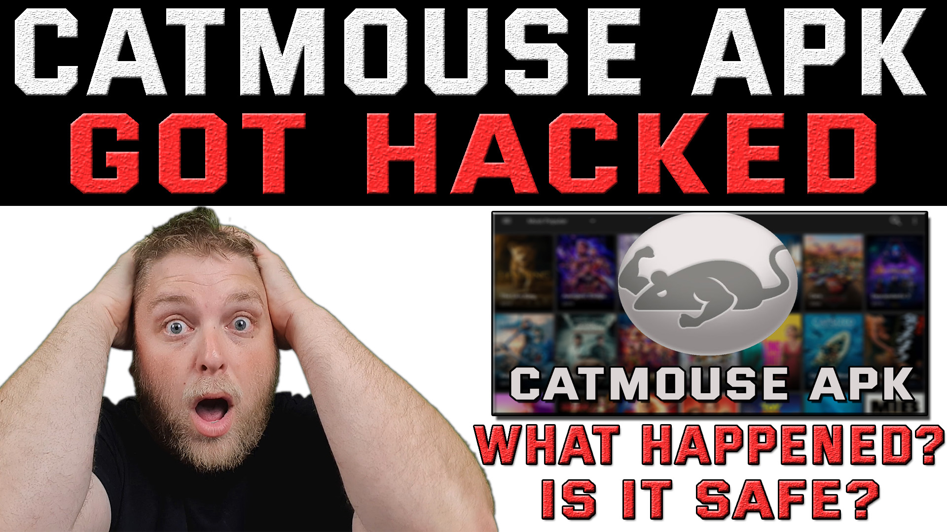 Catmouse apk Hacked