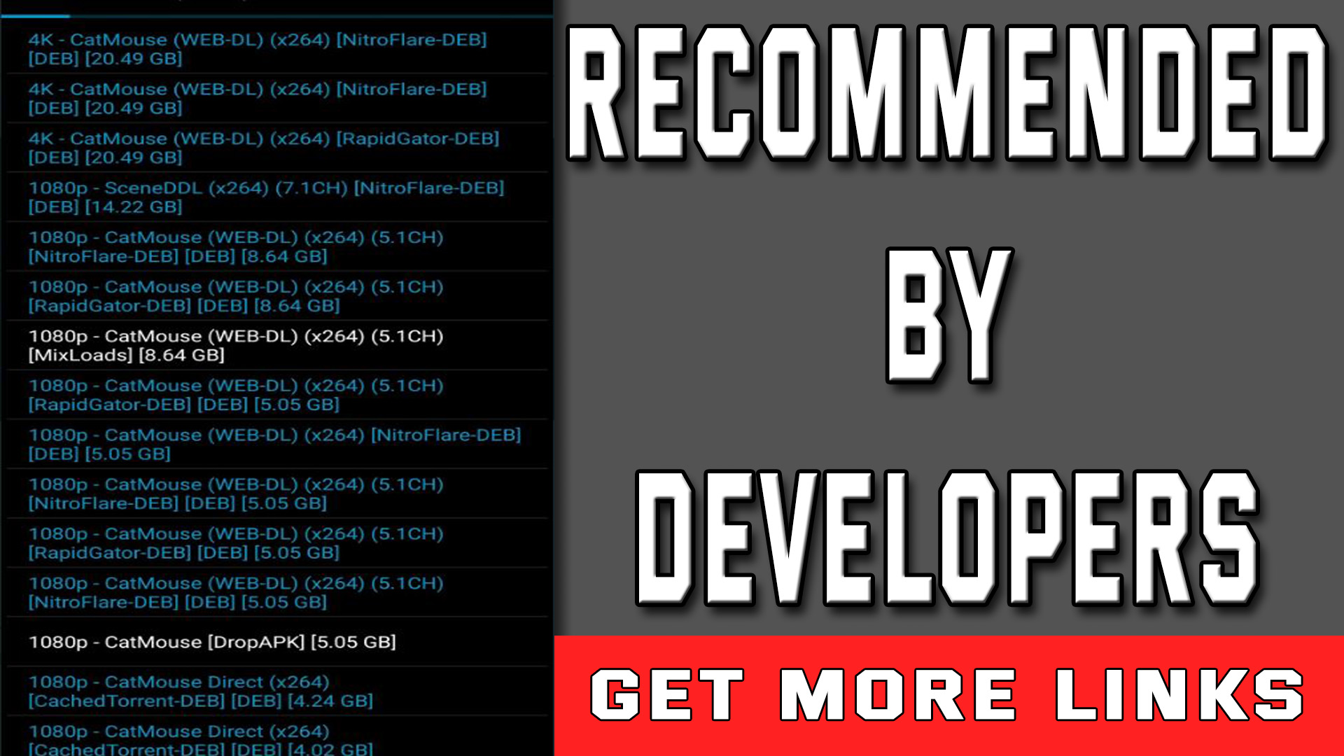 Devlopers urge users to use real debrid