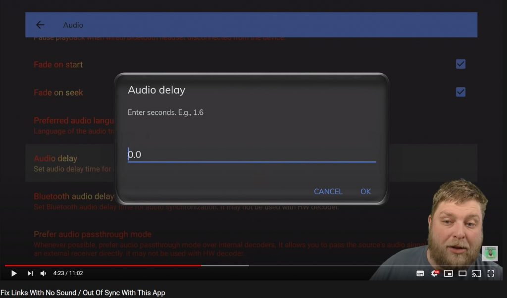 Set Audio Delay