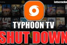 Typhoon TV Taken Down By ACE