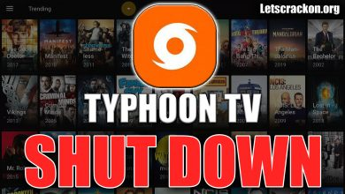 Typhoon TV Taken Down By ACE
